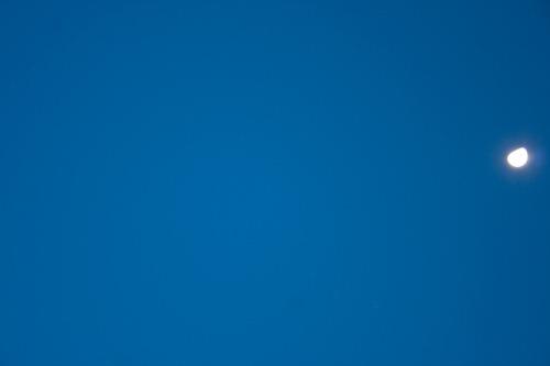 Einfach nur blau